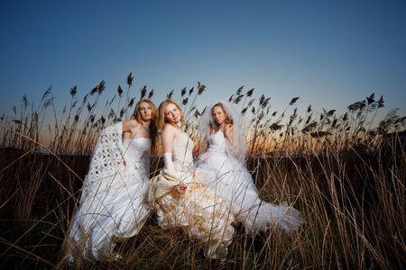 brushwood: Three brides posing in evening