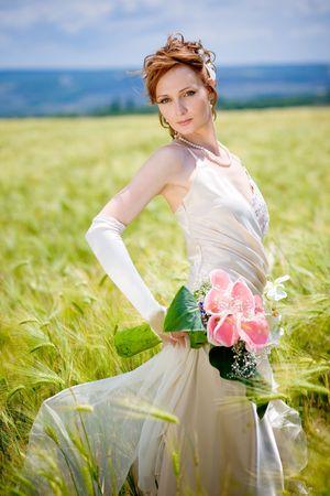 eared: Bride posing in eared field Stock Photo