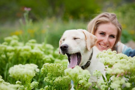 fondling: Girl with her dog posing in spring grass
