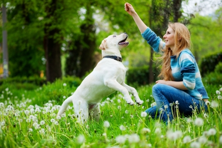 fondle: Beautiful woman with playful young dog on fresh green meadow Stock Photo