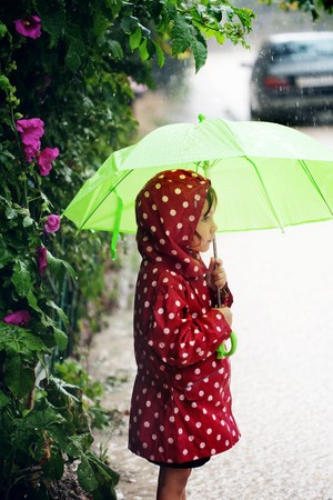 umbrella rain: Little child walking in the rain