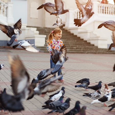 flapping: Child playing with doves in the city street