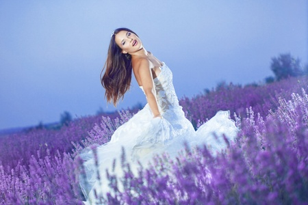 Bride posing at lavender field at night Stock Photo - 10307123