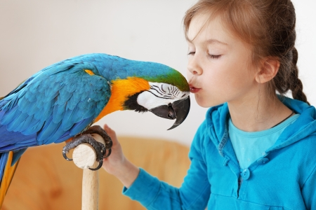 pappagallo: Ritratto di una ragazza bambino con il suo pappagallo ara domestico