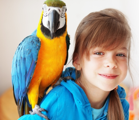 parakeet: Portrait of a kid girl with her domestic ara parrot