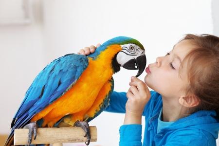 papagayo: Retrato de una niña con su niño interno loro ara