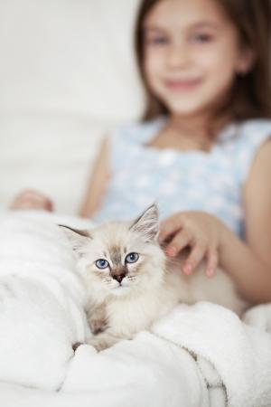 gato jugando: Inicio retrato de niño adorable con un pequeño gatito descansando en un sofá suave Foto de archivo