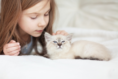 Home portrait of adorable child with small kitten resting on a soft sofa