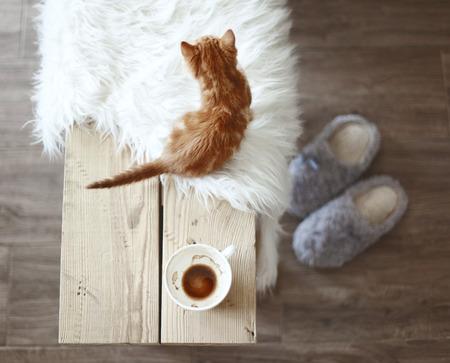 Stilleven informatie, een kop koffie op rustieke bankje, bovenaanzicht punt