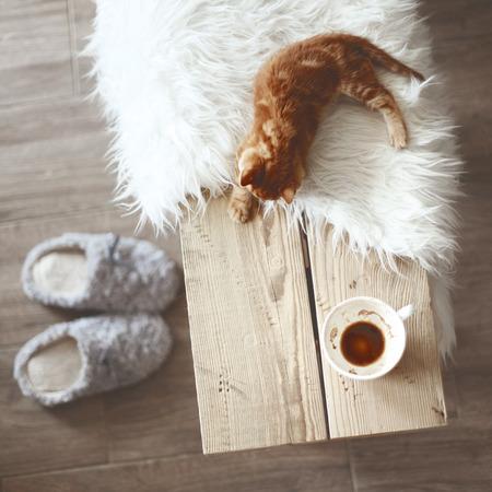 stile: Dettagli Still life, tazza di caffè sulla panchina rustica, alto punto di vista Archivio Fotografico