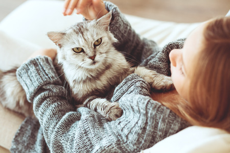 sueter: Ni�o que juega con el gato en casa Foto de archivo