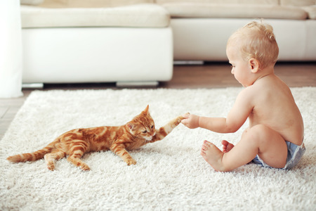 ginger cat: Toddler playing with red cat on a white carpet at home