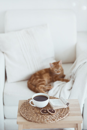 Still life interior details, cup of coffee and a book near white cozy chair photo