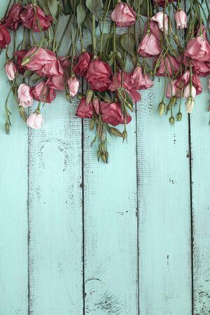 ミントの木製の背景、選択と集中、シャビーシックなスタイル、カスタム テキストのためのスペースにピンクのトルコギキョウの花。