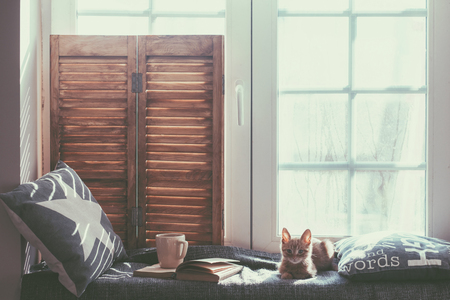 cold: Warm and cozy window seat with cushions and a opened book, light through vintage shutters, rustic style home decor.