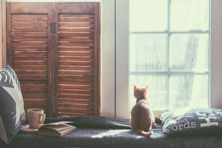 windows: Asiento de la ventana Cálido y acogedor, con cojines y un libro abierto, se iluminan a través de persianas vintage, decoración del hogar de estilo rústico.