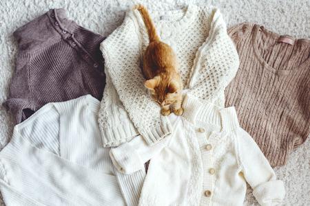 Maglieria primo piano, gatto seduto su maglioni vista superiore, colori pastello. Archivio Fotografico