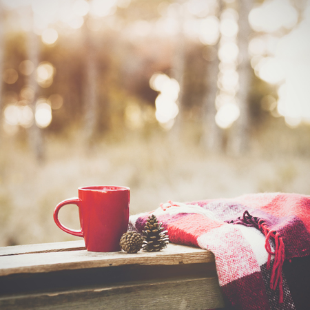 winter day: Cup of tea and warm plaid blanket on wooden rustic bench in the autumn forest. Fall weekend. Photo toned, selective focus. Stock Photo