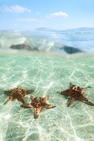 half fish: Split image of tree starfishes underwater, sunny day, blue sky Stock Photo