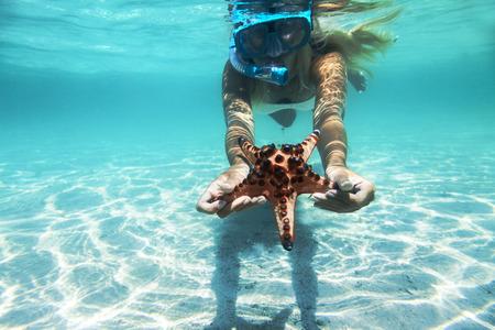 stella marina: La donna è lo snorkeling subacqueo, mostrando le stelle marine Archivio Fotografico
