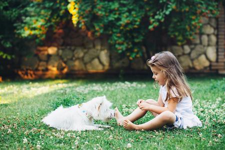 裏庭の芝生の上の英語のウエストハイランド ホワイト テリア犬と遊ぶ子