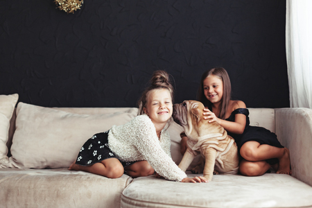 Home portrait of two cute children hugging with puppy of Chinese Shar Pei dog on the sofa against black wall