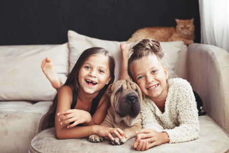 Home portrait of two cute children hugging with ginger cat and puppy of Chinese Shar Pei dog on the sofa against black wall Standard-Bild
