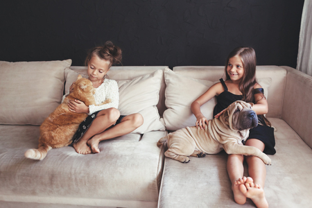 Home portrait of two cute children hugging with ginger cat and puppy of Chinese Shar Pei dog on the sofa against black wall Stock Photo