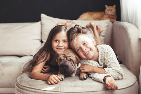 Home portrait of two cute children hugging with ginger cat and puppy of Chinese Shar Pei dog on the sofa against black wall Stockfoto