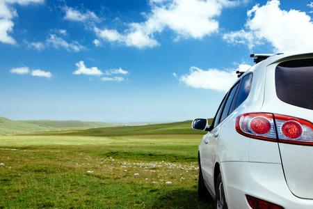 Auto in het veld op groen gras en blauwe luchten Stockfoto - 61672322