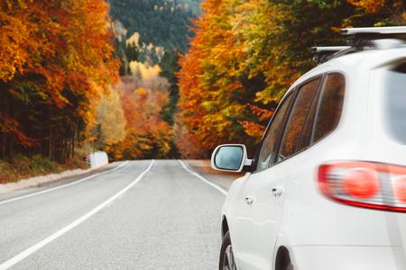 Herfstweg tussen bos naar de bergen. Herfst reis, slecht weer.