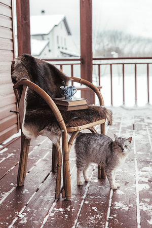 log book: Chair with fur cover on a porch deck of a log cabin with snow. Tea, warm blanket, reading and cat. Cold winter relax weekend