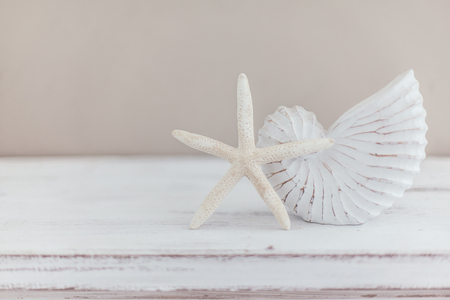 Shabby chic interior decor for farmhouse. Natural seashell and wooden sign on vintage shelf over pastel wall. Beach home decoration. Banco de Imagens