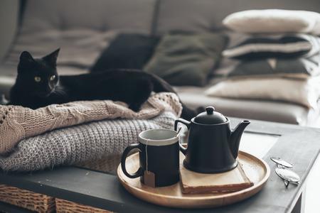 Martwa natura w mieszkaniu wnętrza salonu. Czarny kot relaksujący się na swetrze. Filiżanka herbaty na tacy porcji na stoliku do kawy. Śniadanie na kanapie w porannym słońcu. Przytulna koncepcja jesień lub zima.