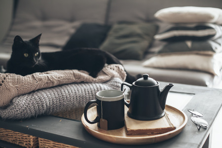 Still life details in home interior of living room. Black cat relaxing on sweater. Cup of tea on a serving tray on coffee table. Breakfast over sofa in morning sunlight. Cozy autumn or winter concept. Stock Photo