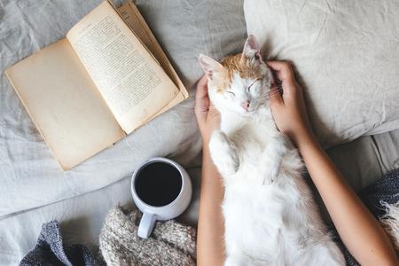 Lindo gato jengibre está durmiendo en la cama sobre una manta caliente. Frío fin de semana de otoño o invierno mientras lee un libro y bebe café o té caliente. Concepto Hygge.