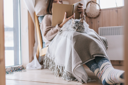 Young girl in sweater and warm socks relaxing on chair with cat and reading book in log cabin near electric heater Imagens