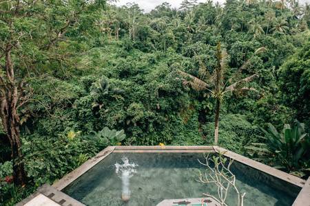 Human swimming in Bali infinity pool with jungle view in Ubud luxury resort Standard-Bild