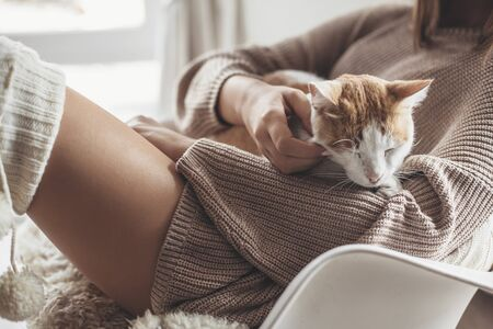 Owner playing with cat one winter weekend. Girl dressed in knit woolen sweater relaxing with her pet on a armchair in scandinavian home. Cosy scene, hygge concept.