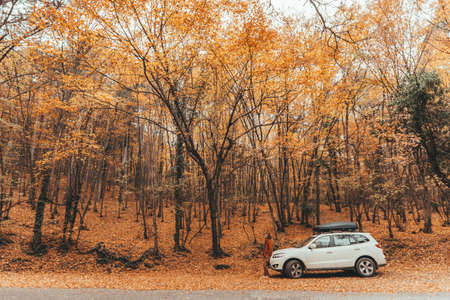 Man driving car in the forest following road way among autumn woods Stockfoto
