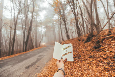 POV of woman's hand holding paper notebook with Colours Of Autumn text over road in magic forest one foggy fall day