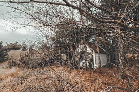 Tiny old hunter's getaway cabin in woods