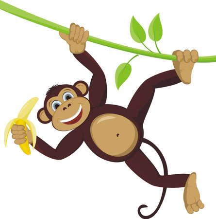 바나나와 덩굴 식물에 원숭이