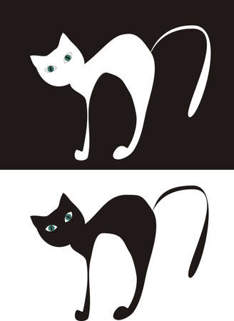Black cat on white background and white cat on black background