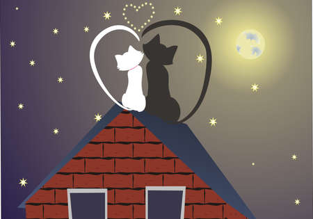 Black and white cats on a roof at a moonlight