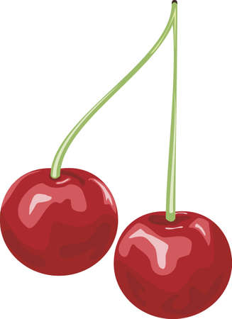 Cherry Stock Vector - 21328305