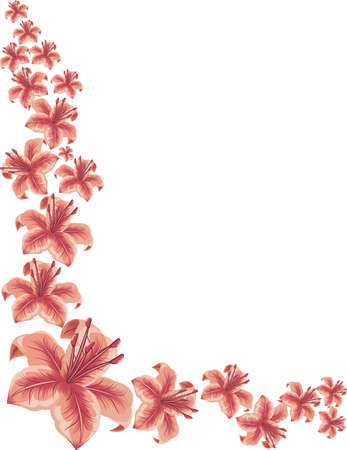 Lilies background Illustration