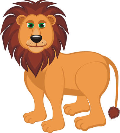 A lion isolated on a white background