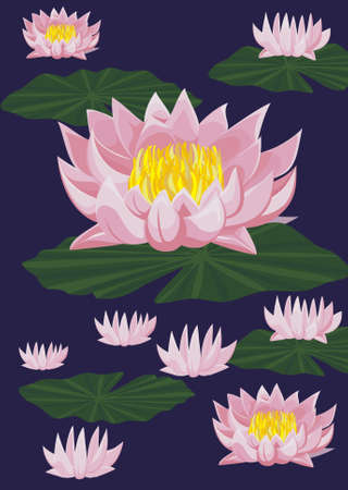 Lotuses with leafs on dark blue background