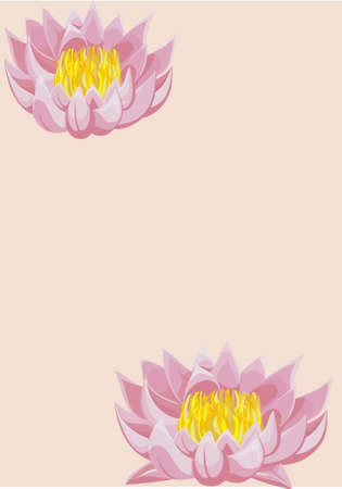 Beige background with two lotuses Illustration